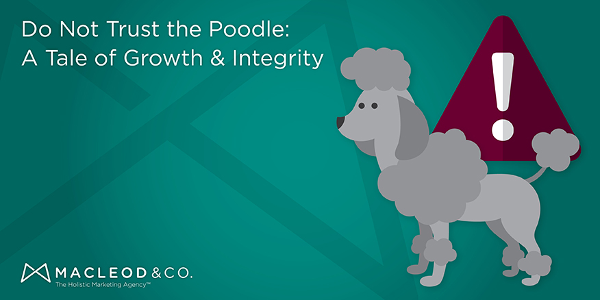 Growth & Integrity | Macleod & Co. The Holistic Marketing Agency Minneapolis