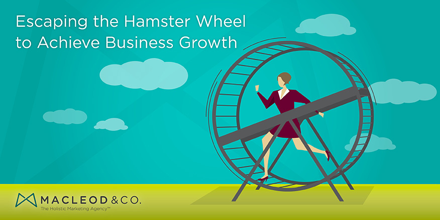 Business Growth | Escaping the Hamster Wheel to Achieve Business Growth | Macleod & Co. The Holistic Marketing Agency – Minneapolis