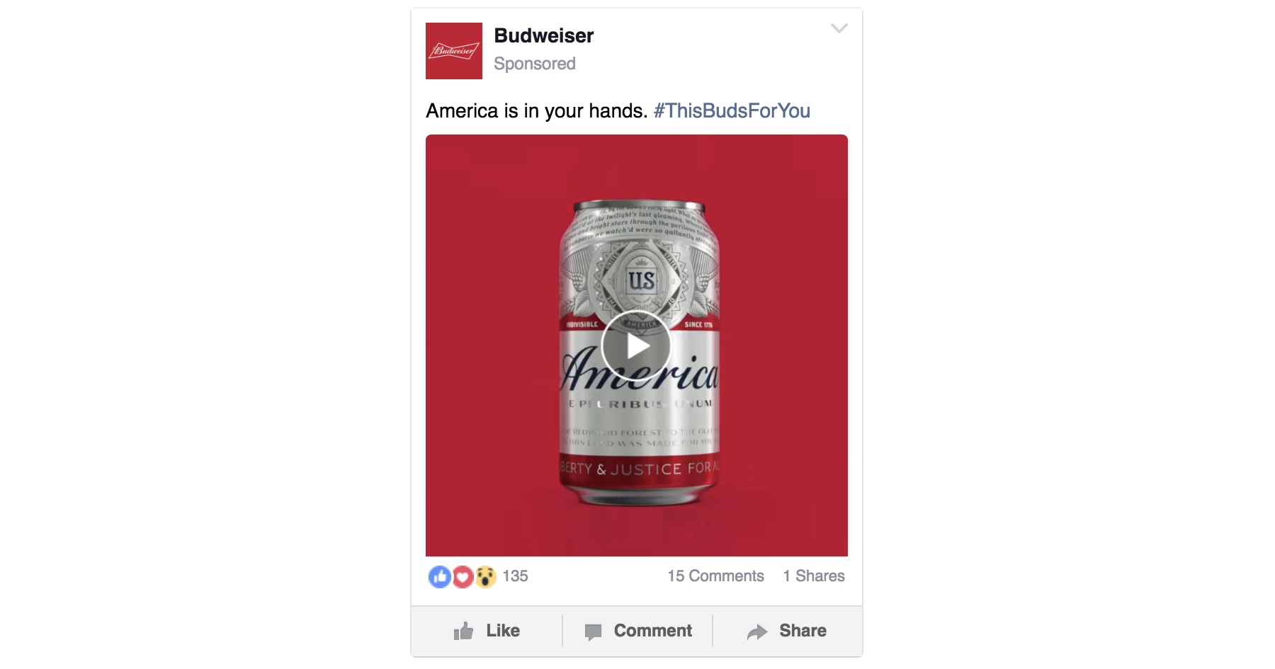 Facebook Video Ads | Which type of Facebook ad should you use for your business? | Macleod & Co. | Full Service Digital Marketing Agency Minneapolis