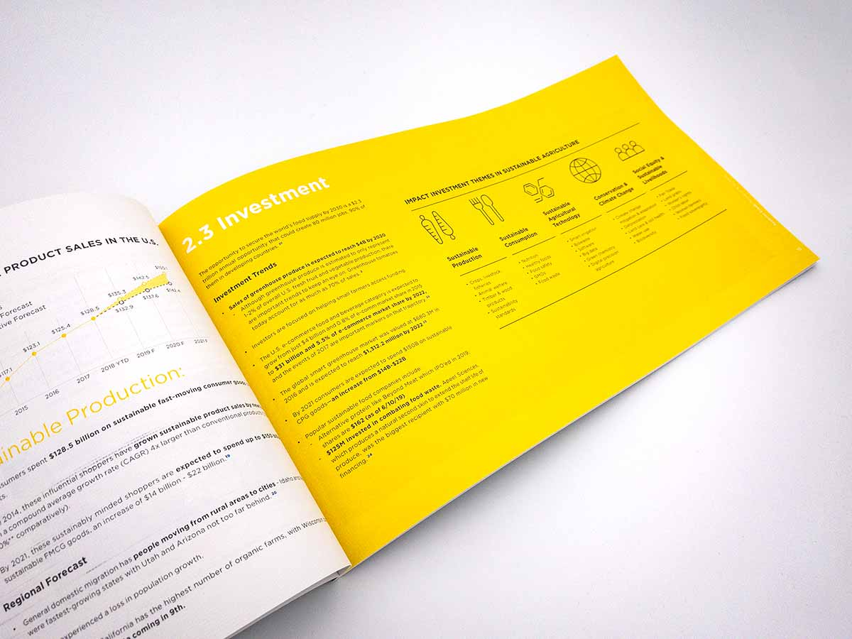 research booklet design